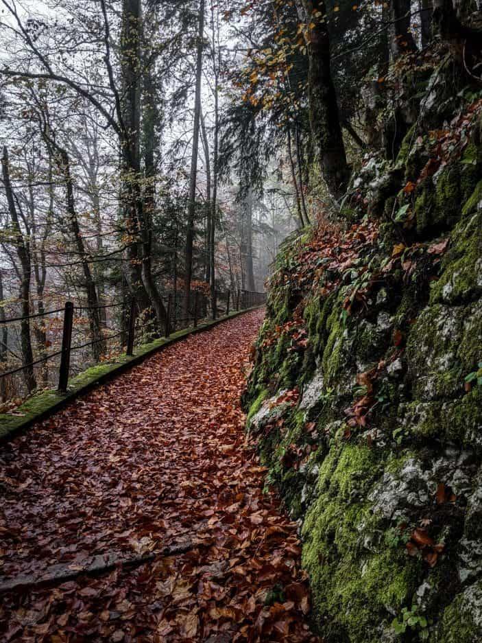 Hallstatt trail