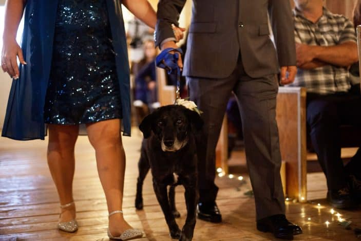 parents of the bride with dog